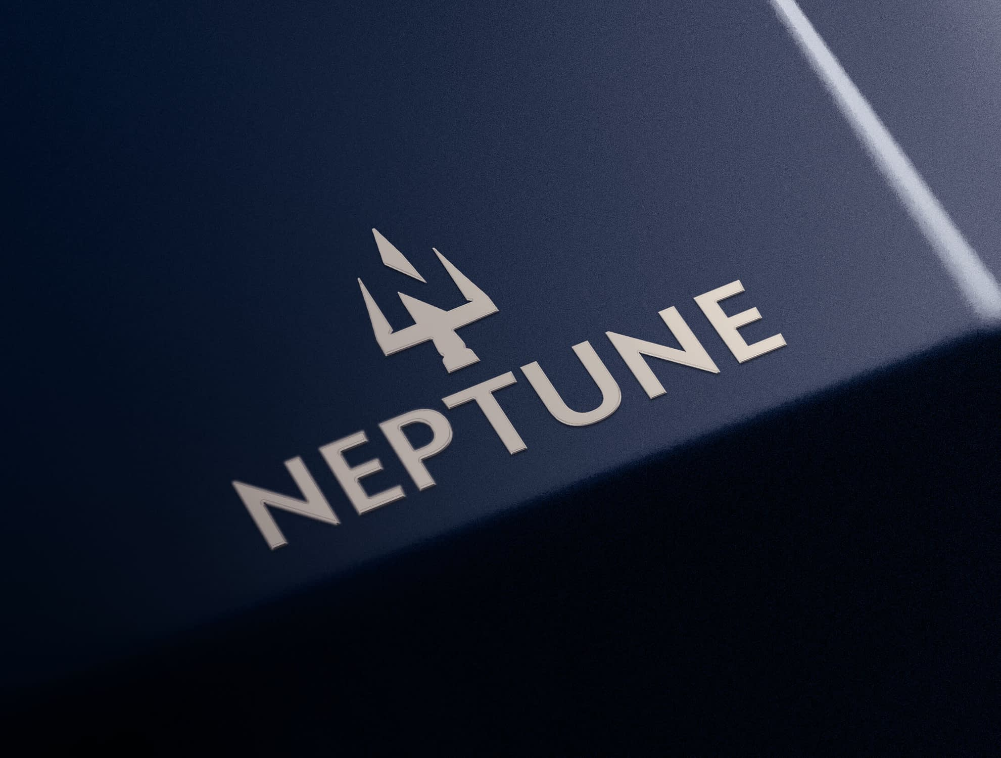 Finished Startup Branding Logo Design for Neptune